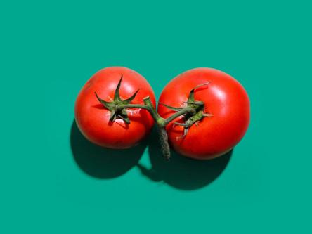 Tomato, Tomatl, wiki rewrite #3 (love-apple)