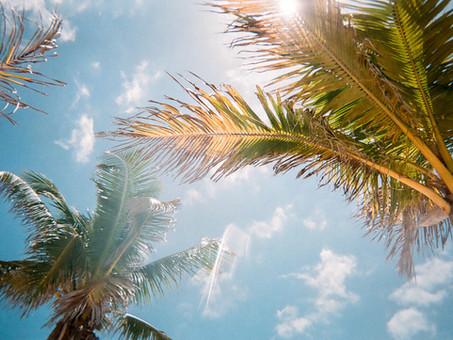 Feature: Florida Keys & Everglades, Jan. 2022