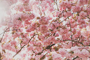 Mindful April: μια διαδρομή αυτογνωσίας αυτή την Άνοιξη