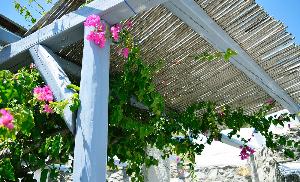 faire ombre jardin terrasse