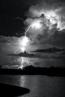 COVID-19 Storm  BJGP Article