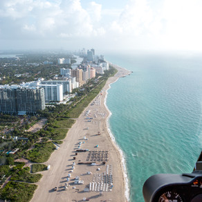 How Living Structures Can Help Protect Miami's Coast and Keep the Paradise Vibe