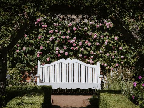 4 Handy Tips For Novice Gardeners