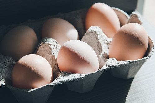 Free-Range Pullet Eggs