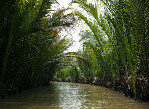 Mekong Delta Day Excursion