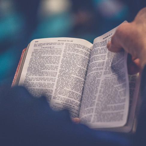 What Did Jesus Say About the Bible?