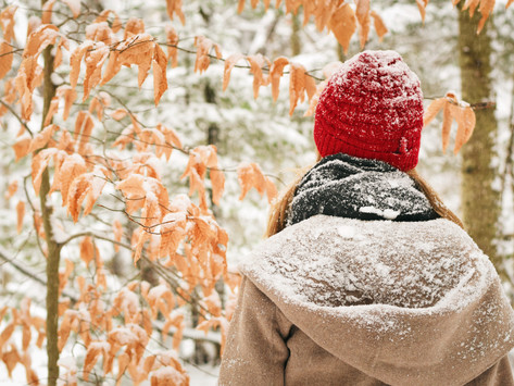 5 Awesome Winter Vacation Destinations: Get Away From The Cold and Snow