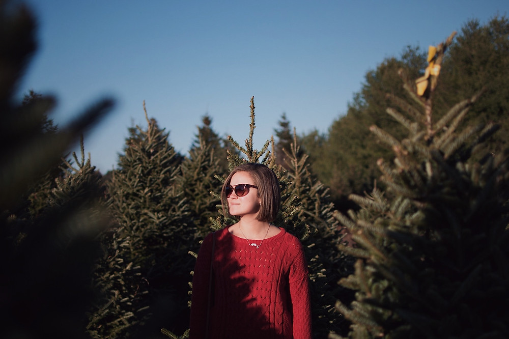Enjoy nature in a Christmas tree farm near your Leesburg rental