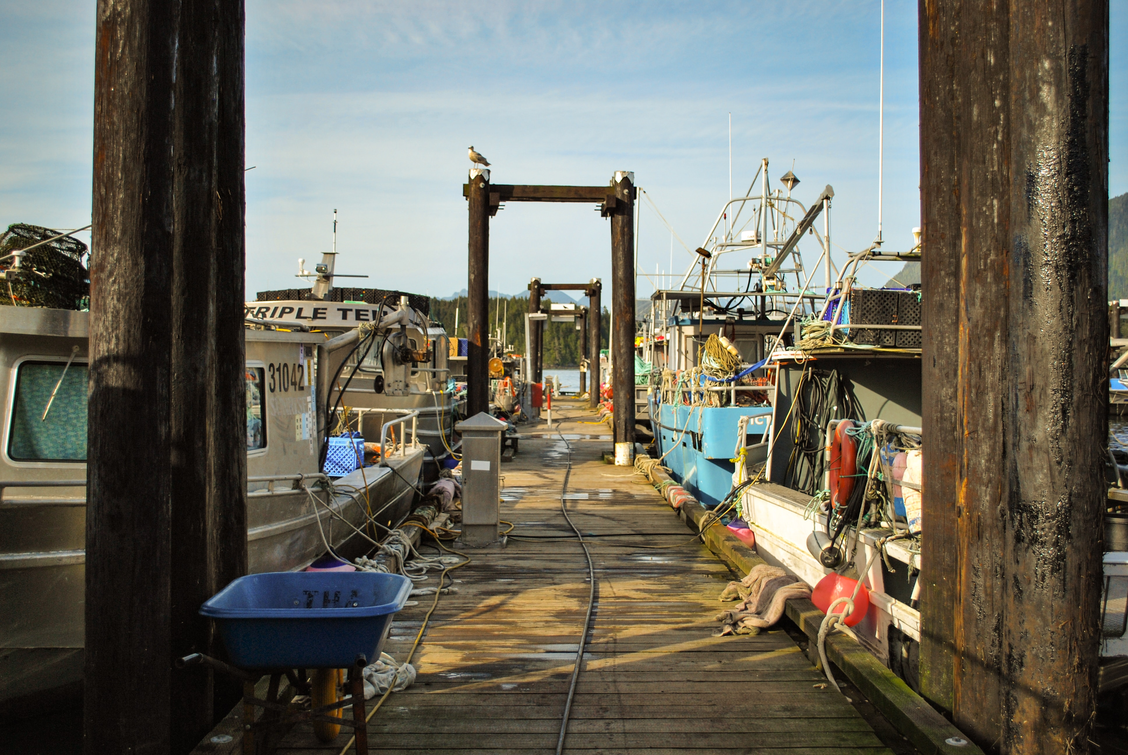 A old fishing dock with fishing boats docked.