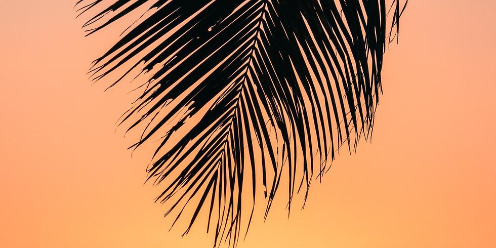 Island Troy - Live Music