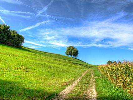 Der Weg des Tourismus in ländliche Räume