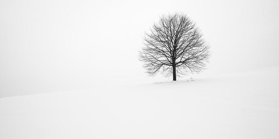 Reiki+Gong: Winter Solstice