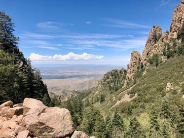 CarMax Albuquerque