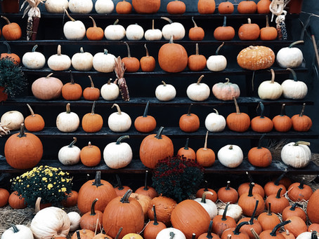 What To Do This Fall In DC