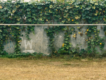 Knocking Down the Goalposts: Why Writing Systems Are More Useful Than Goals