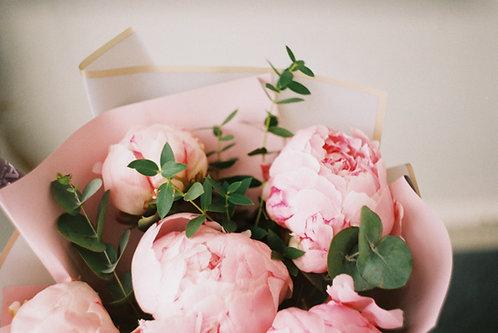 Pivoines - Roses
