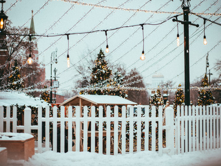 Top tips on how to protect your fence during the winter.