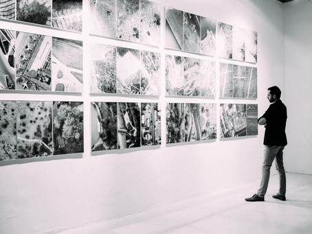 The Primary versus the Secondary Art Market