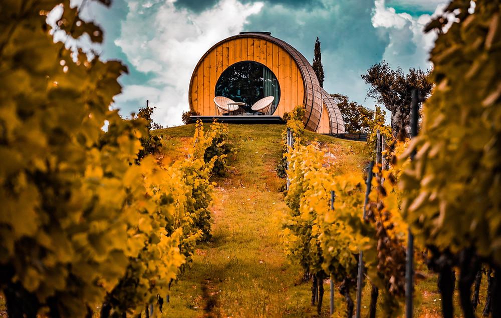 Bien choisir son vin de Porto - Voyage à Porto Blog