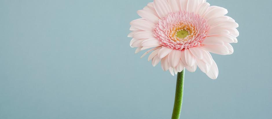 4 Key needs of compassionate leaders