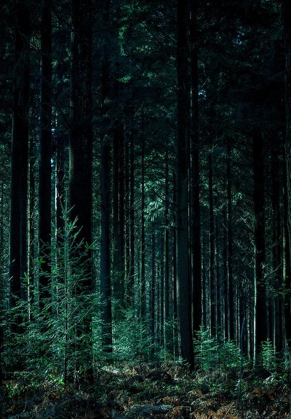 Image by Sleep Music