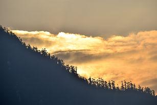Image by Sayanti Chakraborty