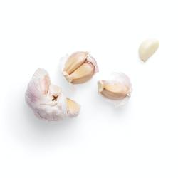 Hot Off The Garlic Press