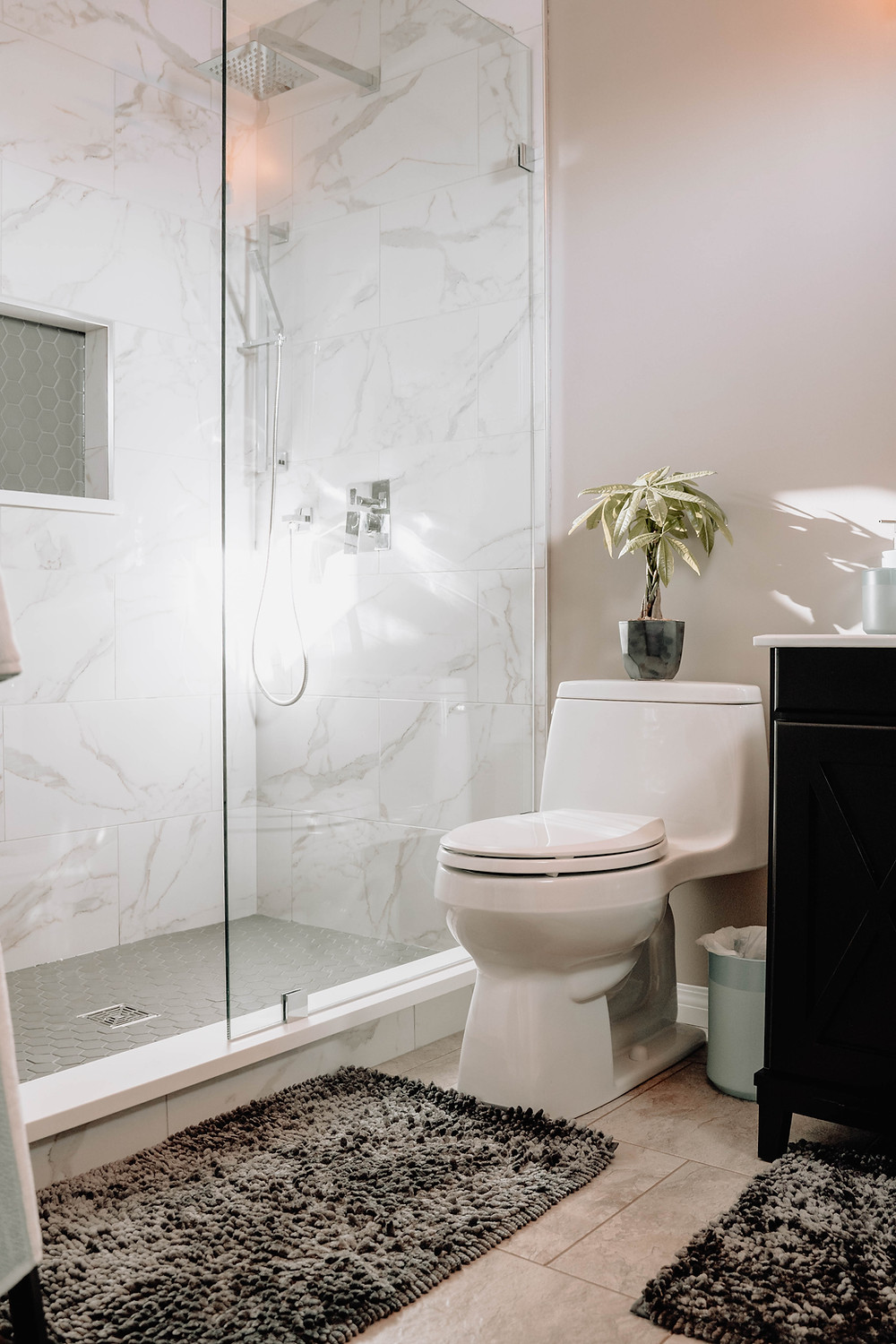 image of a bathroom with toilet and standing shower