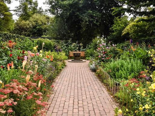 Debunking common gardening myths