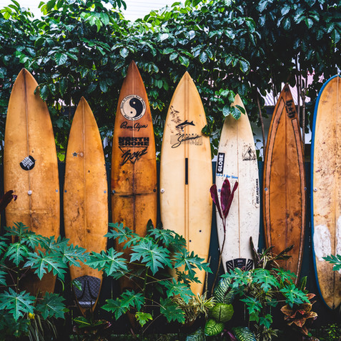 Beginners Guide To Surfing