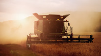 Alberta, Canada-Based W.A. Grain & Pulse Solutions Enters Receivership