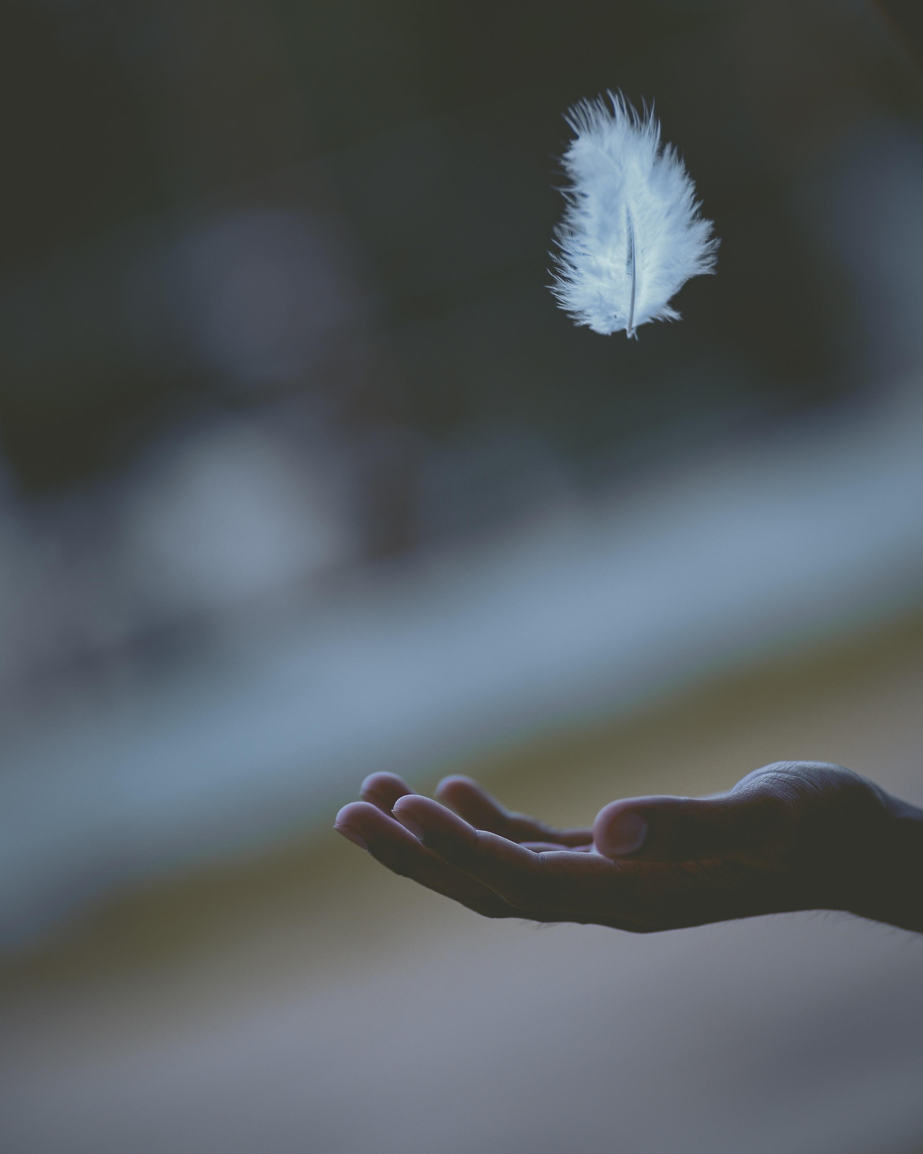 Reiki Distance Healing - Online 30 mins