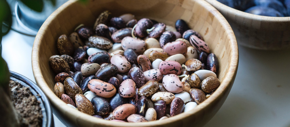 Do You Need to Worry About Lectins?