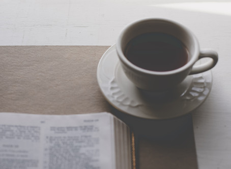 What is the Best Way to Read the Bible? A Bible Reading Plan for Beginners