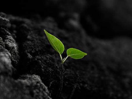 Hardened Soil