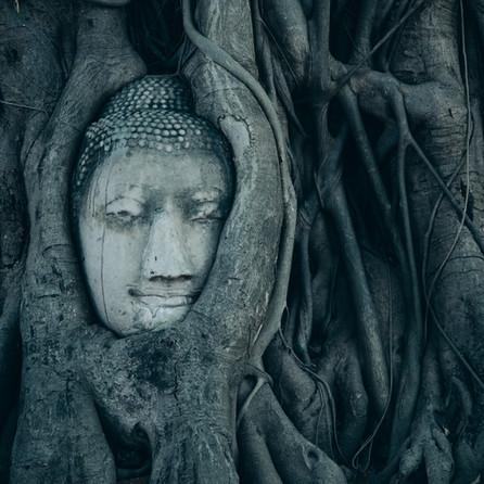 Where Reality Meets Spirituality