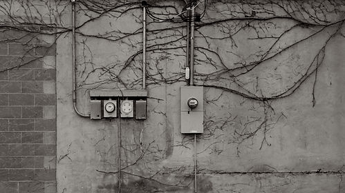 Image by Nikolas Noonan