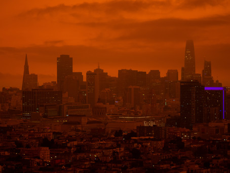 Why I'm Writing a Dystopia While Living in One