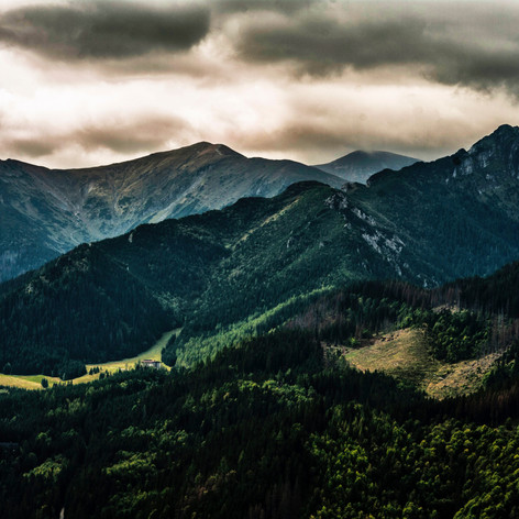 Image by Janusz Maniak