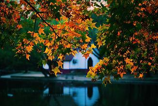 Image by yapo zhou