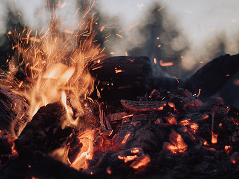 Agni (the digestive fire)