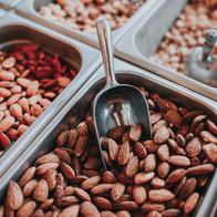 Hazel & Nuts