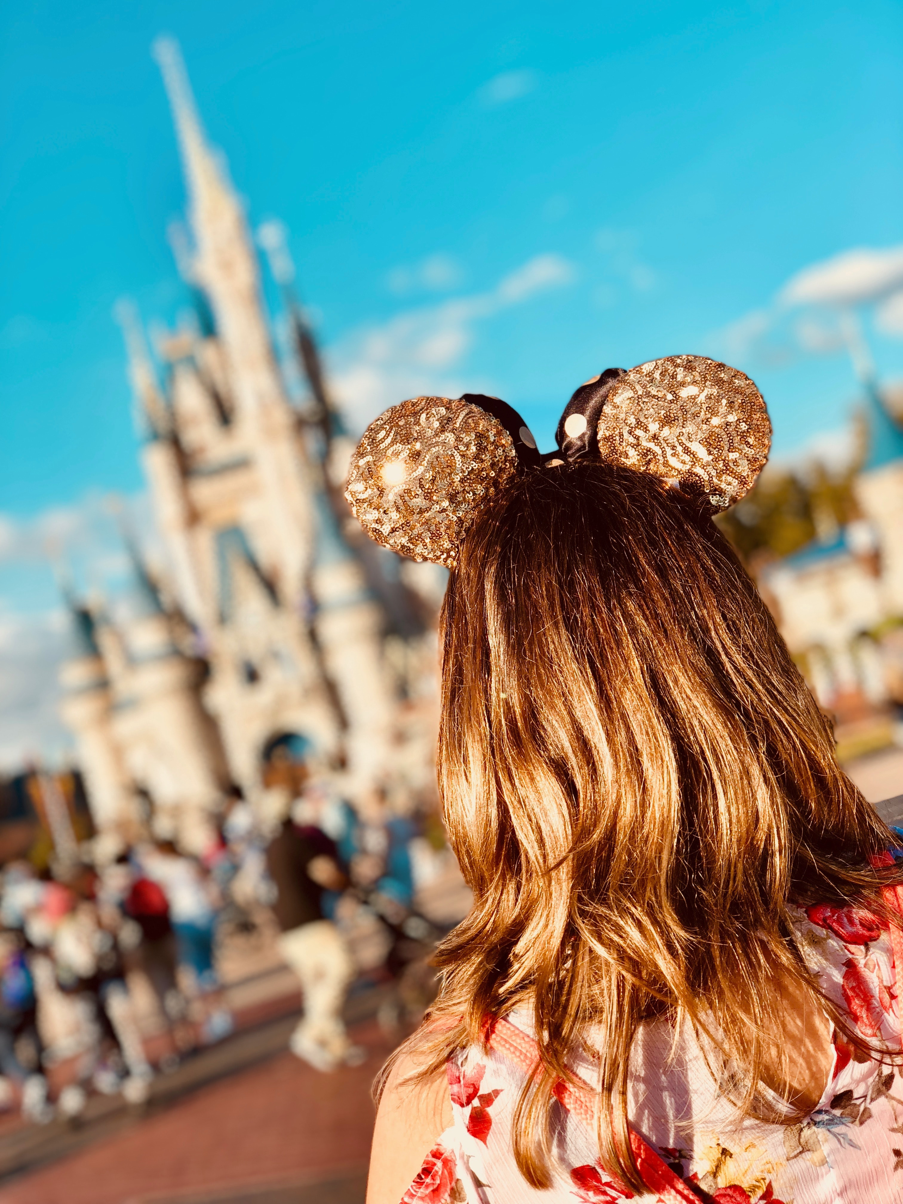 Phone Consultation for Walt Disney World