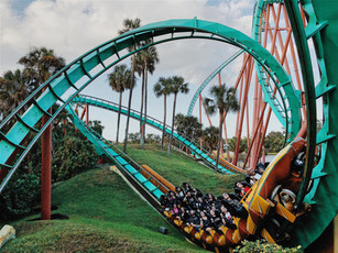 The Change Curve; Riding the Rollercoaster of Change