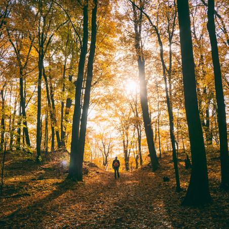Sunday Inspiration: Setting Your Heart on a Pilgrimage
