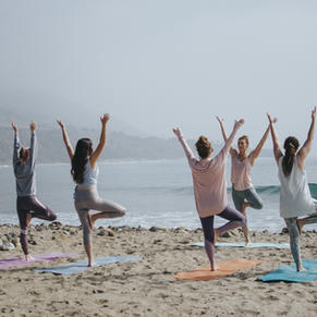 YOGA, BARRE OR FITNESS CLASS