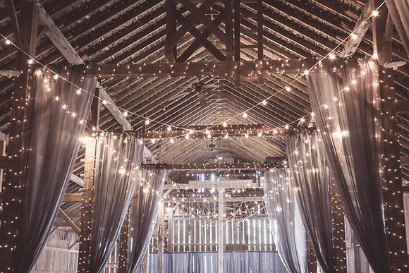 Fairy Lights - Cold White glow