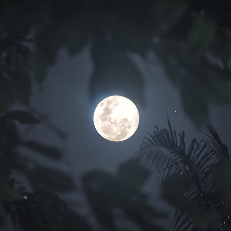 Worm Moon, Super Full Moon Gong