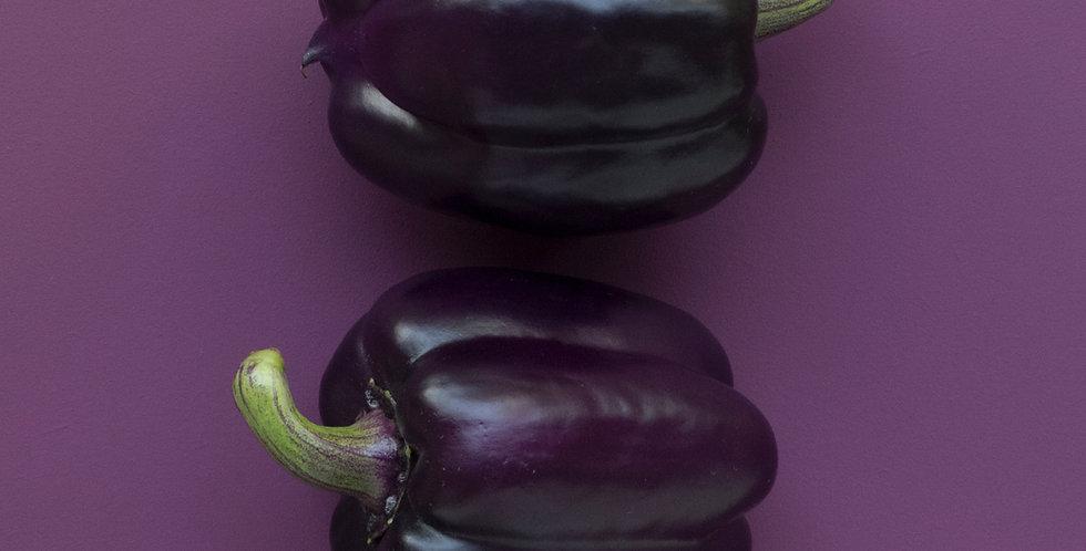 Sweet Pepper- Purple