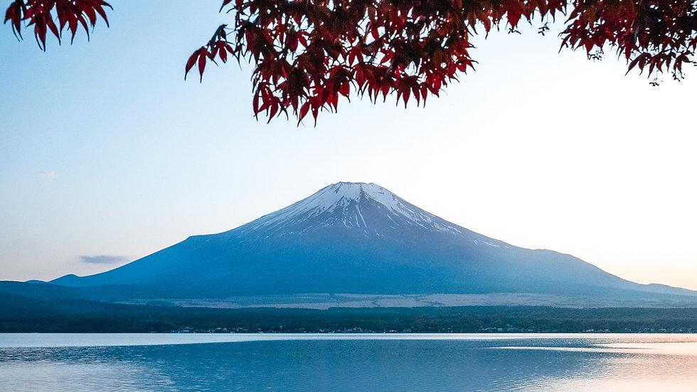 Tokyo Mt.Fuji / Hakone & Kyoto 6 Days